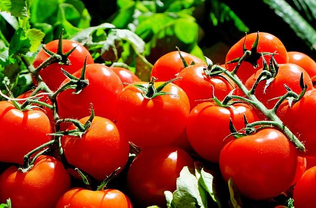 prilojeniq-Agrodrip-images-domati